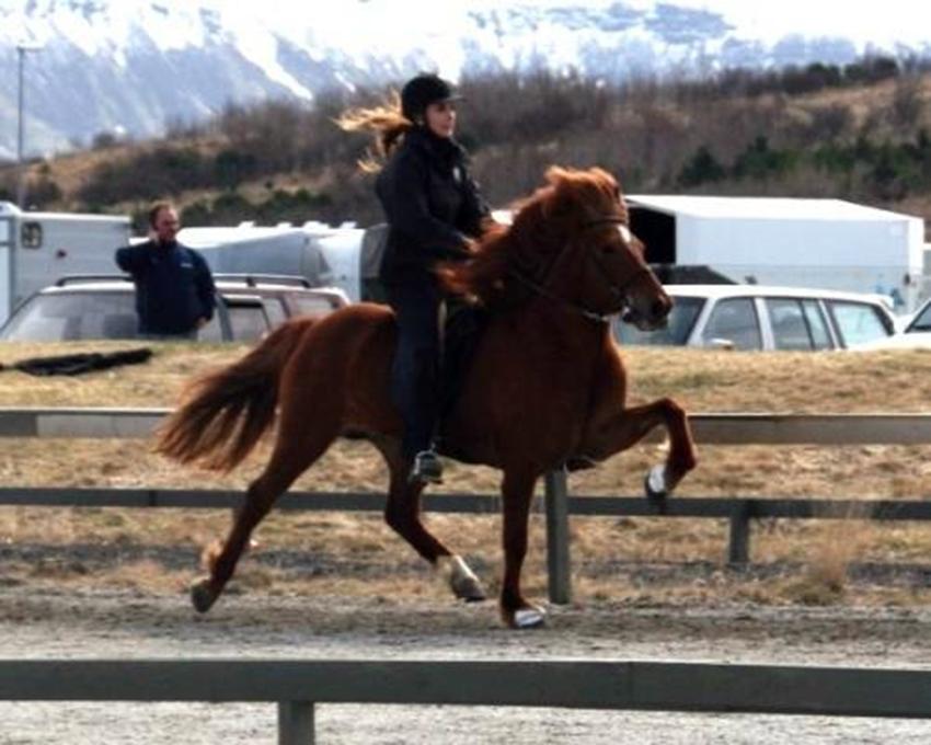 Inga og Sara frá Sauðárkróki á vetrarleikum Sörla 2009.