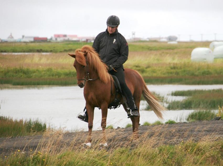 Garún frá Sauðárkróki