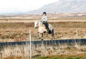 Hátíð frá Sauðárkróki