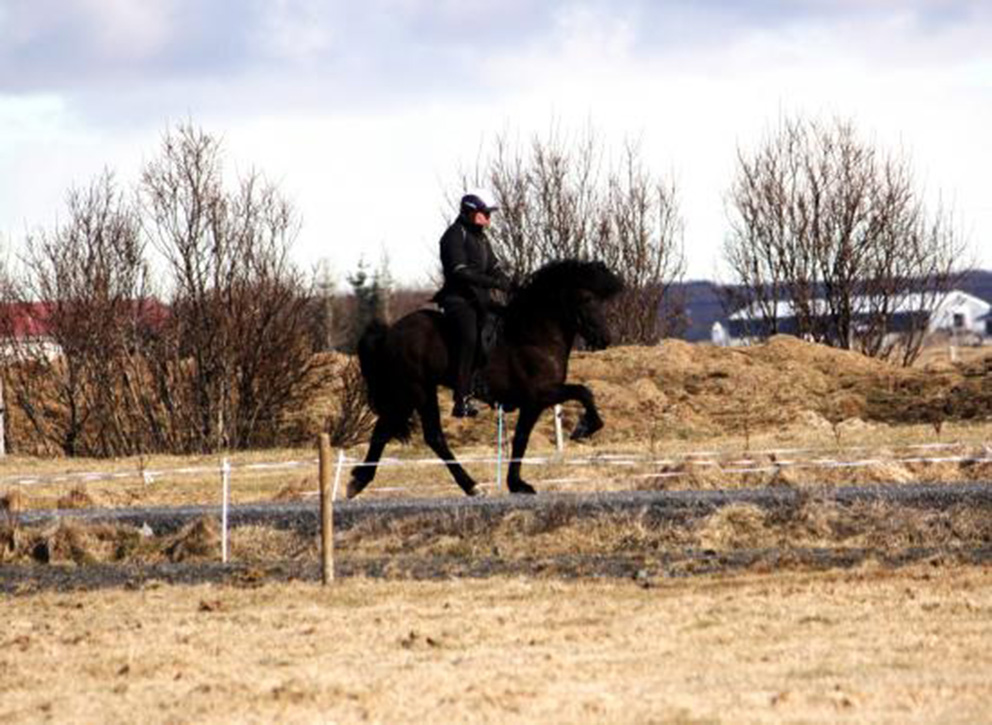 Hrafnar and Helga Una training in April 2013.