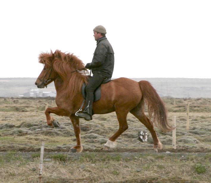 Sara og Erlingur æfa sig á afleggjaranum að Langholti í byrjun maí 2008.