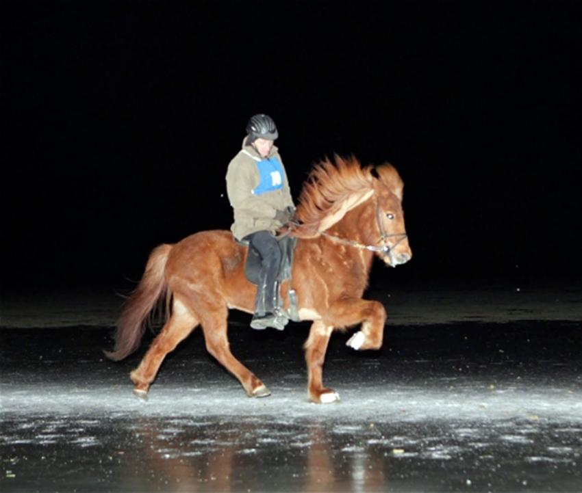 Snillingarnir Smári Adólfsson og Eldur frá Kálfholti sigrðu karlaflokkinn.