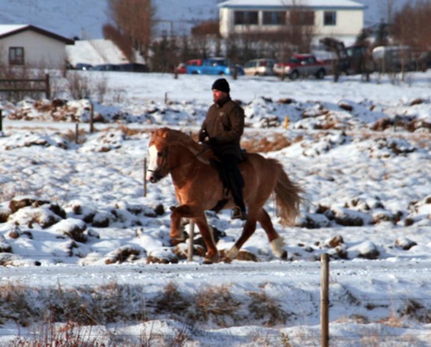 Þrymur og Erlingur í febrúar 2011.